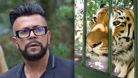 Tygr Osmanyho Laffity je po smrti! Smutná slova návrháře o jeho skonu