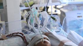 Muž z Pardubic měl zabít svou 14denní dcerku: Dítě ho prý rušilo pláčem, později se přiznal