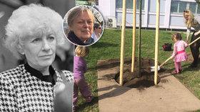 S Olgou Havlovou se znala přes 30 let: Milena (76) »pomohla« na její počest vysadit v Praze strom