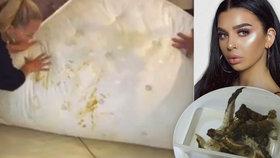 Psí výkaly a páchnoucí odpadky: Slavná bloggerka Kayla Jenkins žila v neuvěřitelném bordelu!