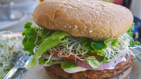 Francie zakázala vegetariánské burgery. Za porušení zákona hrozí pokuta 10 milionů