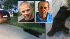 Důchodce usmýkal psa za autem: Šokující závěr policie