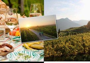 Za vínem k sousedům v Dolním Rakousku: Kde si užít vinařský podzim?