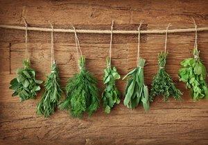 Není nad to, když vám na zahradě rostou zdravé a voňavé bylinky, které dodají jídlu tu pravou chuť.