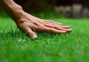 Dokonalý trávník není věda, když se vyhnete nejčastějším chybám
