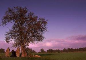 Jaký strom určuje vaši povahu? Prozradí vám to moudrost keltských druidů