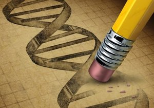 Přepíšou vědci lidský genom?