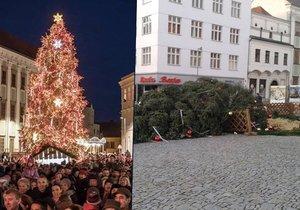 """Silný vítr """"rozčísnul"""" vánoční atmosféru: Shodil strom, měnil se v orkán"""