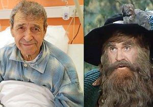 Krakonoš z Krkonošských pohádek František Peterka porazil rakovinu, v nemocnici si ho ale přesto nechají.