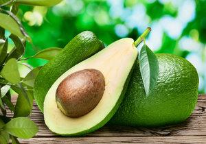 Láďa Hruška předvádí jednoduchý trik, jak si vypěstovat doma hruškovec přelahodný, čili avokádo.