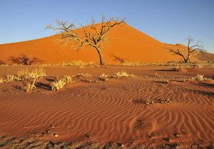 Sucho ohrožuje miliony lidí.