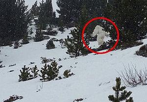 Ve Španělsku viděli yettiho! Sněžného muže natočili na kameru