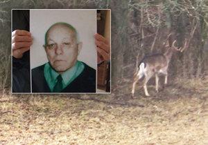 Muže zabil agresivní jelen.