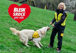Zuzana Daušová (55) z organizace Helppes: Učíme psy pomáhat a lidi psům rozumět
