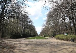 Pražský magistrát chce vědět, kolik lidí navštěvuje pražské parky.