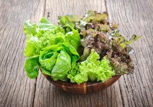 Výběr typů a odrůd salátu pro pěstování přes zimu je bohatý.