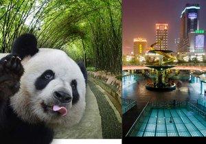 Čínské Čcheng-tu je víc než jen pandy.