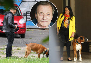 Milenec Hany Gregorové se stará o psa, kterého si pořídili ještě s Radkem Brzobohatým!