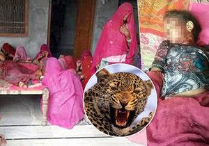 Holčičku v Indii sežral leopard: Zvíře ji vytáhlo přímo z postele.