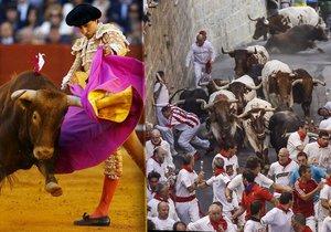 Fiesta v Pamploně, jejíž součástí jsou býčí zápasy i běh s býky, se blíží. Vypukne 6. července.