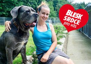 Michaela Zemánková z organizace Dogpoint: Hledáme domov i pro psí seniory
