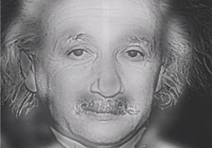Koho vidíte, Marylin Monroe, nebo Alberta Einsteina?