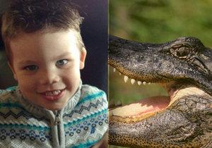 Nová fakta: Chlapeček (†2) si z písku stavěl hrad, v tom na něj zaútočil aligátor