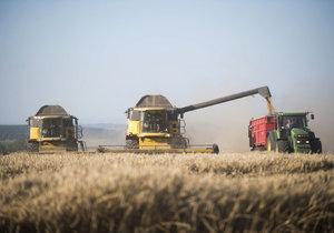 """První """"Dožínky na Letné"""": Zemědělská slavnost láká na zážitkovou všehochuť"""