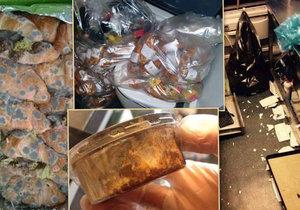 Exstevardi o RegioJetu: Místo myčky krabice, jídlo na WC. Firma: Nesmysl