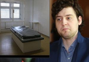 Blesk navštívil psychiatrické oddělení věznice, kde ležel Dahlgren.