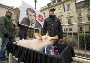 """Babišovi přivezl mrtvého čuníka: """"Zabíjí prasata,"""" zuřil zemědělec Rada"""