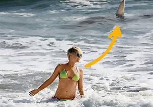Simone Gutsche přehládla žraloka, který byl hned za ní.