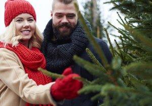 Vánoční stromky: Jaký stojánek zvolit?