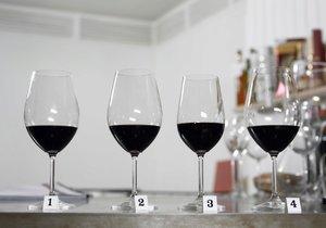 Test Blesku - nejlevnější vína