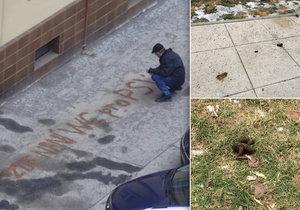 Zoufalý muž na Letné napsal na chodník vzkaz pejskařům.