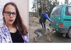 Pátrání po Míše (13): Policie nasadila psa na vyhledávání mrtvol!