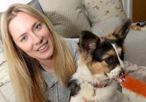 Nejošklivější pes v Británii našel nový domov.
