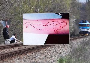 Nešíříme hoax, brání se policie: Modrá velryba v Česku je, máme důkazy, tvrdí.
