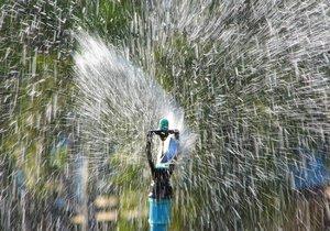 Stát chce přimět lidi, aby šetřili vodou a zalévali i splachovali dešťovou vodou.