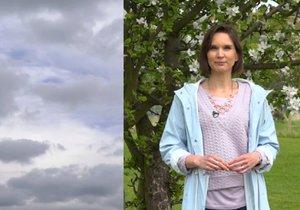 Meteoroložka Dagmar Honsová a její předpověď