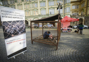 Na Malostranském náměstí sedí muž v kleci: Protestuje proti kožešinovým farmám