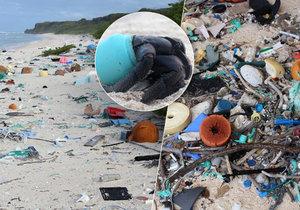 Hendersonův ostrov by mohl být tropickým rájem, namísto toho ho pokrývají tuny odpadků.