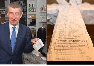 Ve Zlíně vyrostl jako symbol odporu proti Babišově EET v jedné z restaurací strom Živnostník, majitel ho nyní zrušil.