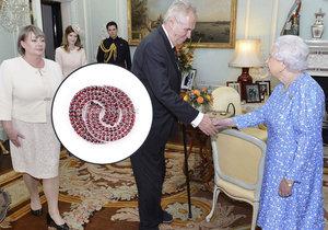 Exporadce Zemana o návštěvě královny: Prezident dal Alžbětě II. cetku, nevhodné.