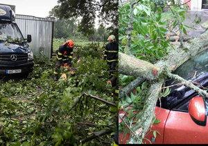 Spadlé stromy, výpadek elektřiny, stojící vlaky: Českem se přehnala bouře