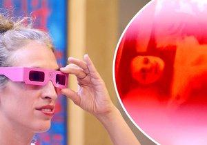 Z malby se stává fotka. Lidé si na výstavě nasazují růžové brýle, aby viděli realitu