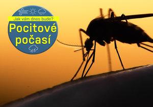 Komáři a vosy to tento týden pořádně rozbalí.