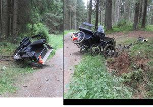 Kočár tažený koněm havaroval v lese: Dva těžce zranění!