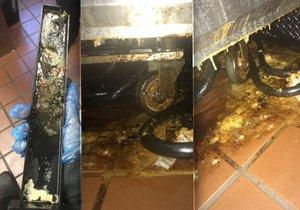 Takto vypadaly hygienické podmínky pobočky McDonald's v Louisianě.