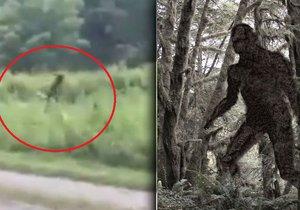 V Severní Karolíně prý zpozorovali legendárního Bigfoota.